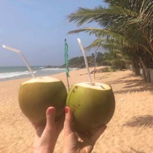 Eindejaarsvragen 2018 Osten City Queen Anne Sri Lanka