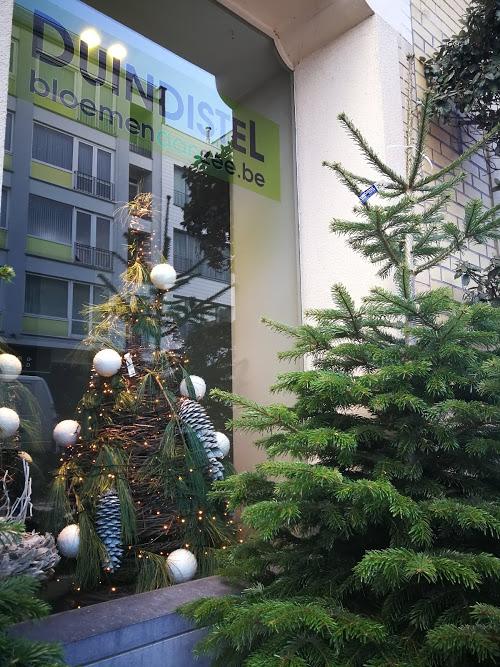 Kerstboom Duindistel Oostende